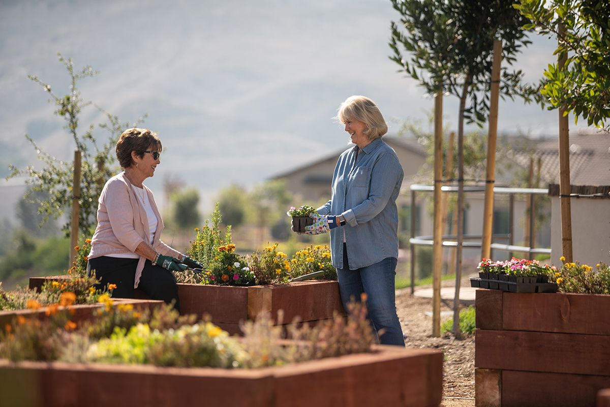 Two ladies gardening together outside.