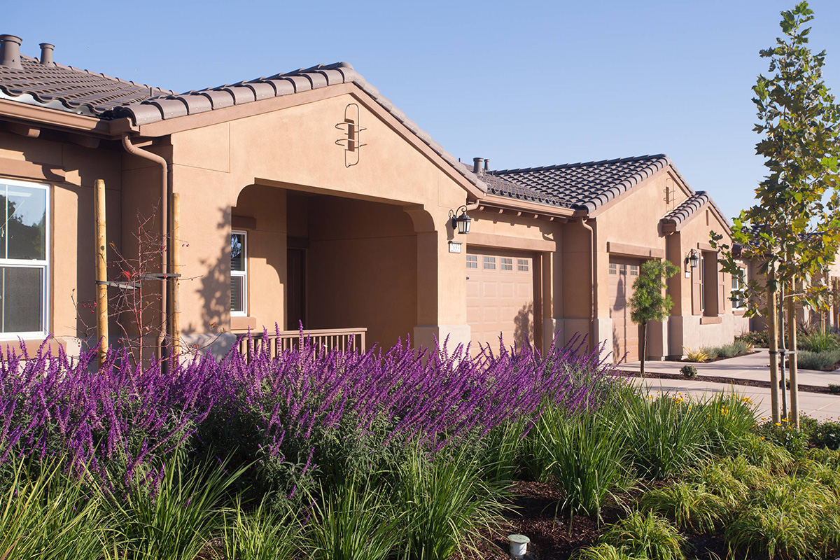 Resident homes with garages and plants out front.