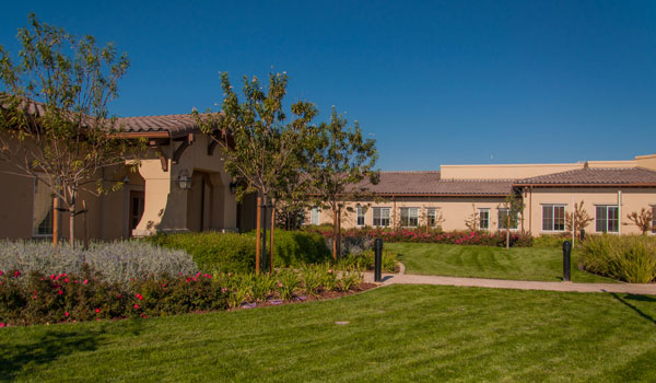 Residences and walk ways with manicured landscaping.