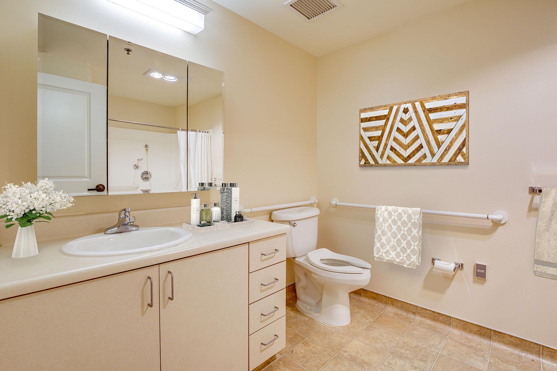 Assisted Living restroom.